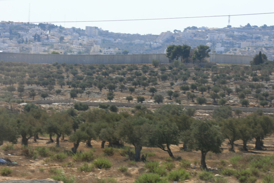 Field Of Joshua Of Beth Shemesh: Joshua's Long Day